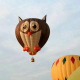 Наружная реклама горячего воздуха воздушные шары с различных видов форма