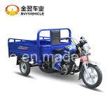Motocicleta de 3 ruedas Max Loading 350kg