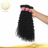 中国安く卸し売り未加工Remyの女性の巻き毛の波のインドのバージンの黒の人間の海外毛のよこ糸