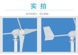 De Chinese 600W Generator van de Energie van de Wind van 12V/24V48V Horizontale voor het Gebruik van het Huis