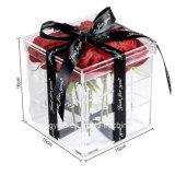 Contenitore acrilico di fiore di vendita di Holt di modo, casella di Camation per la madre