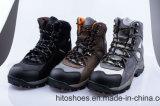 Самые лучшие продавая взбираясь типы работая обувь (HD. 0824)