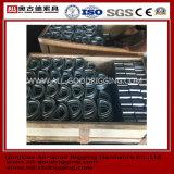 Qualitäts-Kohlenstoffstahl schmiedete Verschluss-D-Klipp