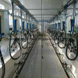 Traire La Vache Hall de l'équipement automatique avec système de mesure électronique