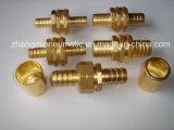 Pipe d'ottone Fitting per il giardino Hose (WL80-16)