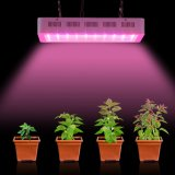 2000W 가득 차있는 스펙트럼 Dimmable LED는 플랜트를 위한 가벼운 램프를 증가한다