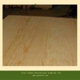 Madera contrachapada de madera de la base de la teca del tamaño estándar