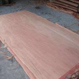 ポプラの合板/構築の合板/包装の合板