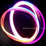 2年のの高い明るさ規則的なLEDのネオン屈曲保証(WD220-DSS2W-2835-120L-NFL)