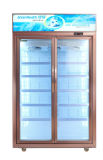 En position verticale Porte en verre congélateur Showcase à double porte