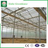 야채 꽃을%s 농업 PC 장 녹색 집
