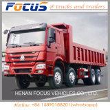 Sinotruck 8X4 HOWO 덤프 트럭 /40-50 톤 덤프 트럭