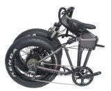 20 Zoll-elektrisches faltendes Fahrrad gefaltetes Fahrrad