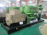 générateur électrique de la biomasse 600kw avec l'exportation de l'engine 12V190 vers la Russie