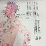 [شنس] طبيّة معالجة بالإبر مخطّط من مدرسة تعليم