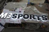 Lettres en plastique acryliques de la Manche de résine époxyde d'affaires de LED Frontlit