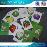 Plastikzeichenkette-Flagge-Markierungsfahnen (NF11F02020)