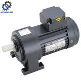 110V AC van het Type van Horizonal de Eenfasige Kleine Motor van het Toestel - E