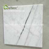 Mattonelle di marmo bianche della parete del marmo di Wellest Guangxi delle mattonelle Polished bianche del rivestimento per pavimenti