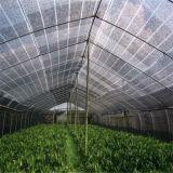 Rede 100% agricultural da máscara de Sun do HDPE do Virgin com proteção UV
