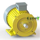 alternatore a magnete permanente basso senza spazzola di 220V 380V RPM