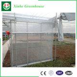 Serre di plastica solari agricole di basso costo mini
