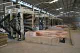 木製のコアベニヤのドライヤー機械出力湿気6%-10%