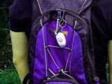 Mini-insectifuge voyage Trousseau Mosquito Repeller ultrasonique de lutte antiparasitaire