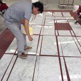 Parete di pietra dell'Italia Bianco Carrara e mattonelle di pavimento di marmo bianche naturali