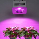 200W穂軸LED Hydroponic LEDは屋内のために軽く育つ