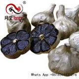 Gealtertes Biokost &Nbsp; Black&Nbsp; Garlic&Nbsp; Extract&Nbsp; Von gegoren