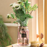 Домашняя оформление красочные цветы вазы из стекла