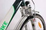 CE cinese Approved Electric Bike di Cheap con Rear Rack