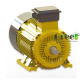 Sysnchronousの永久マグネット発電機