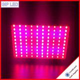 Bescheinigung 300W LED Cer RoHS FCC-PSE wachsen Licht