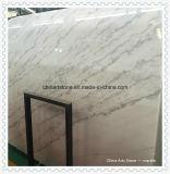 Losa de mármol blanco de la pared y piso