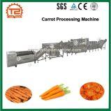 Шайба моркови высокой эффективности и машина моркови автомата для резки обрабатывая