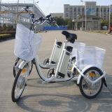 De Batterij met drie wielen stelde Elektrische Trike rseb-704 in werking