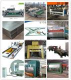 De volledige Productie die van het Triplex de Lijn van de Machine met Beste Kwaliteit en Prijs maken