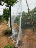 Le brouillard en nylon d'oiseau de 100% prend l'anti réseau d'oiseau d'agriculture