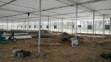 Ventilación simétrico de 42 pulgadas Ventilador de refrigeración de invernaderos y las aves de corral