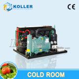 Kommerzieller modularer tiefer Kühlraum-Gefriermaschine-Raum