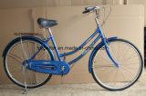 24 dame Steel Bike