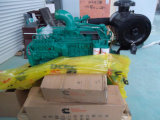 6 ltaa8.9 Cummins-C325 Двигатель для строительного оборудования