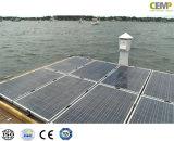 Funzionando nel comitato solare policristallino approvato freddo 310W di condizione climatica