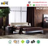 Sofà domestico moderno del salone della mobilia (HC8101)