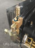 De Compressor van de Lucht van de Zuiger van de hoge druk 30bar voor de Plastic Slag van de Fles