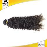 Remyの毛のWeft 9Aブラジルの人間の毛髪
