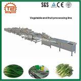 Arruela do legume com folhas da fonte da fábrica e máquina de processamento do cortador