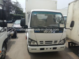 Nueva China Isuzu 600p Van Truck